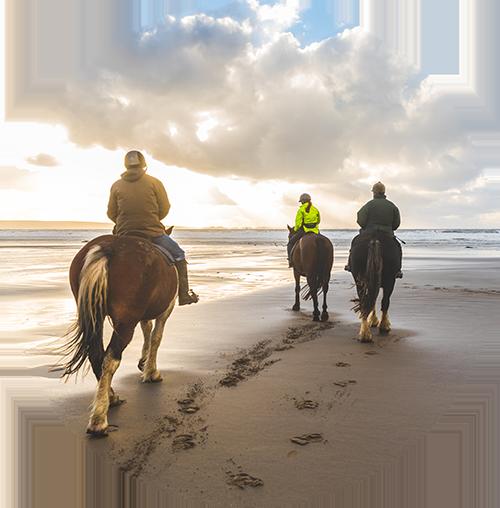 Horseback Riding of Myrtle Beach Logo